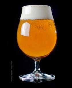 เบียร์ American IPA